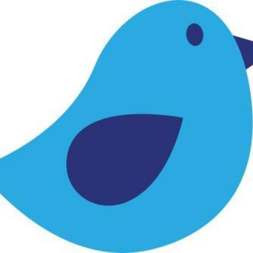 bird-311095_1280